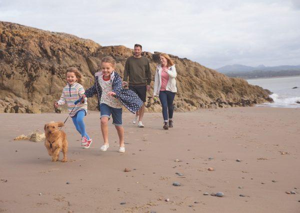 caravan holidays with dogs – kick back times